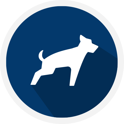 How to Claim a Personal Injury After a Dog Bite Accident